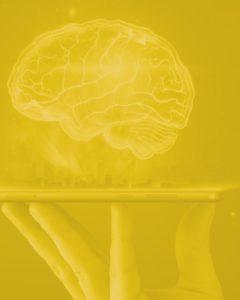 Intellicompute | Business Intelligence